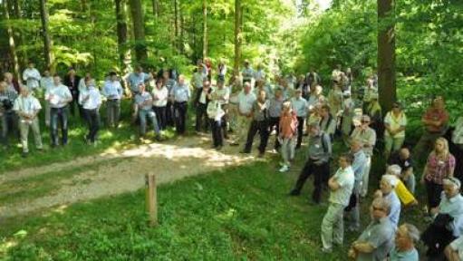Den privatejede Pipstorn Skov skal udvikles i tæt samarbejde med frivillige. Foto: Faaborg-Midtfyn Kommune